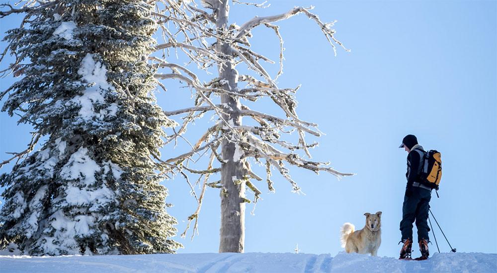 Ponderosa State Park Winter