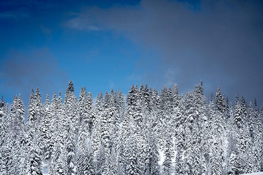 Winter in McCall Idaho